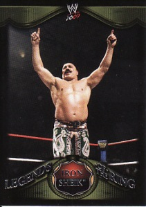 Iron Sheik Legends of the Ring