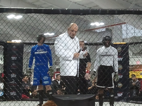 MMA World Expo Amateur Bouts