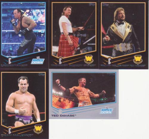 2013 Topps WWE Parallel