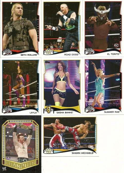 2014 Topps WWE