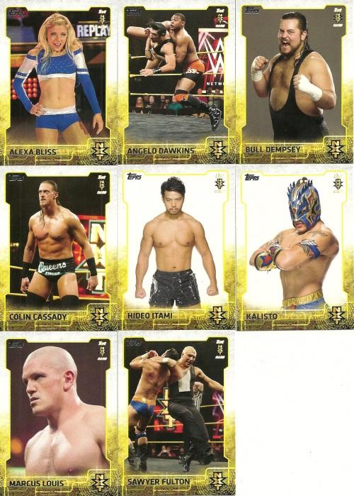 2015 Topps WWE NXT
