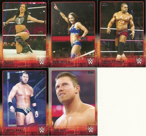 2015 Topps WWE Parallels