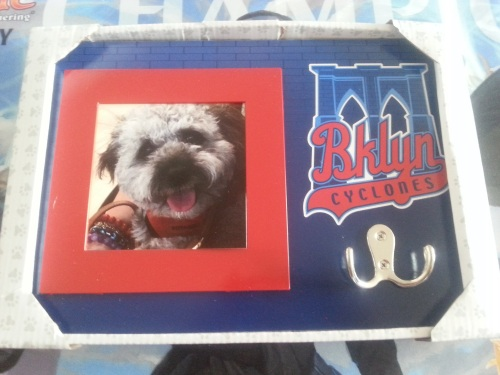 Brooklyn Cyclones Picture Frame