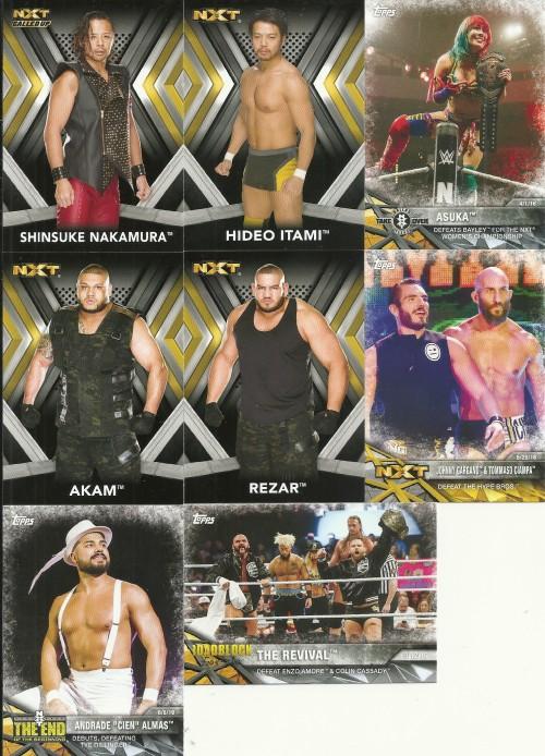 2017 WWE NXT Cards