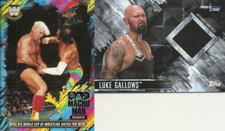 Luke Gallows Relic Card and Macho Man Tribute Card