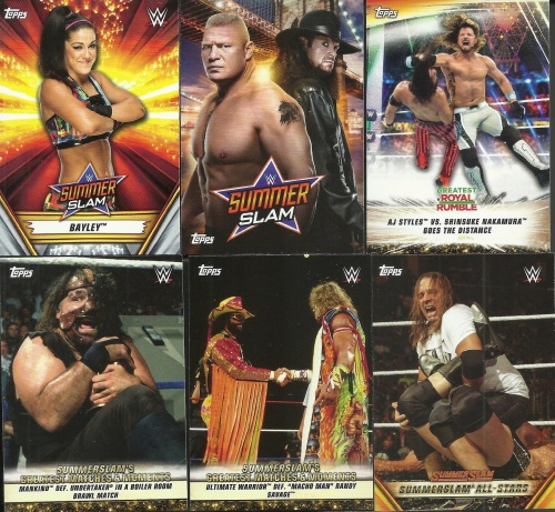 2019 Topps WWE Summerslam Other Cards