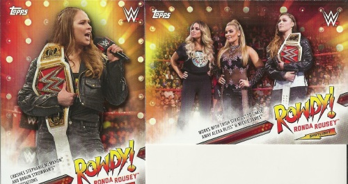 2019 Topps WWE Summerslam Ronda Rousey Tribute Cards