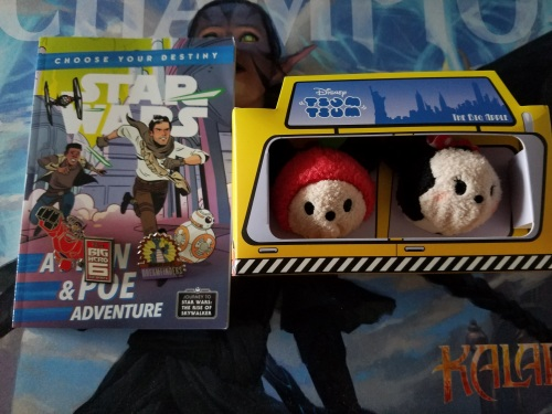 Stars Wars Choose Your Adventure and Disney Pins