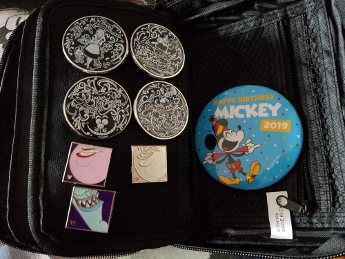 Disney Pin Collection (6)